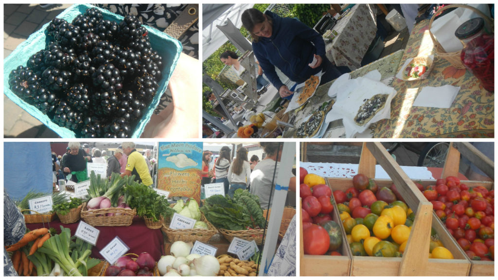 We caught the Saturday farmer's market too. Fresh blackberries!